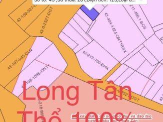 Đất xã Long Tân sát đường Lý Thái Tổ